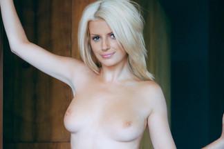 Northern Star - Stephanie Branton