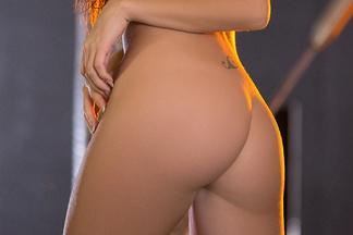 Niemira Playboy